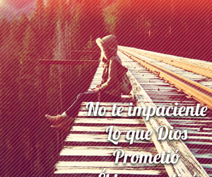 amor, background, and frases image
