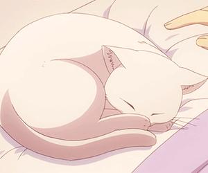 kawaii, pale, and kitty image