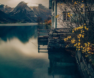 nature, house, and photography image