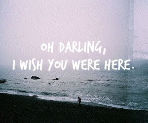 darling, film, and quote image