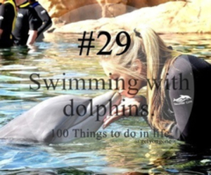 dolphin, 29, and 100 things to do in life image