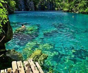 blue, green, and paradise image