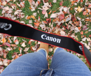 autumn, boots, and canon image