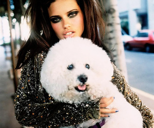 Adriana Lima, dog, and model image