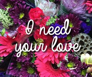 he, need, and hugs image