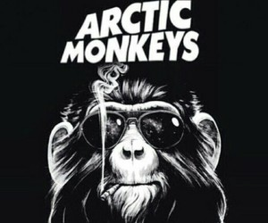 arctic monkeys, monkey, and am image