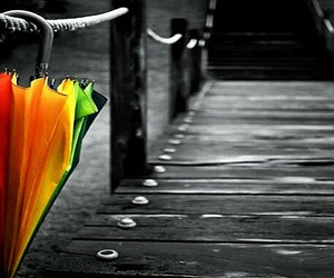 pretty, rainbow, and umbrella image