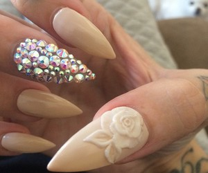 nails, rose, and Nude image