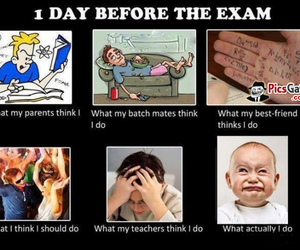 exam, funny, and school image