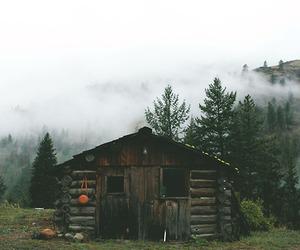beautiful, cabin, and feelings image