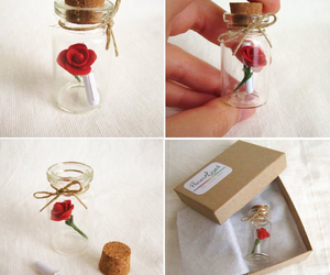 rose and diy image