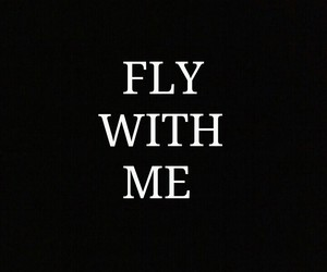 black and fly image