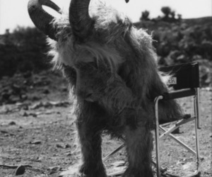 where the wild things are, black and white, and sad image