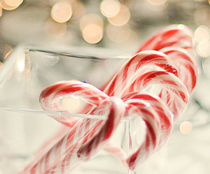 candy, christmas, and winter image