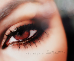 beautiful, brown eyes, and eyes image