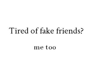fake friends and bff image