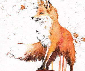 autumn, fall, and fox image