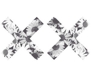 black and white, flower, and x image