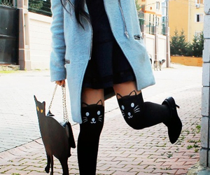 cat, style, and trendy image