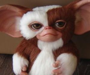 90's, fluffy, and gizmo image
