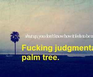 funny, lol, and palm tree image