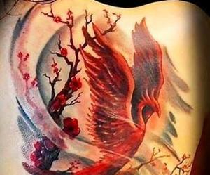 tattoo and phoenix image