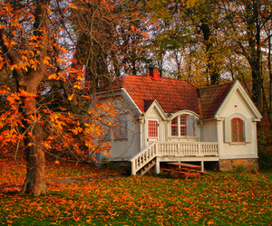 autumn, fantasy, and 1on1 image