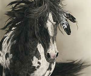 horse and feather image