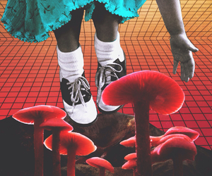 mushroom, psychedelic, and trippy image
