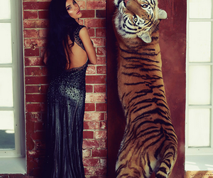 girl, sexy, and tiger image