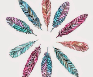 feathers, cute, and pretty image