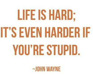 stupid, quote, and life image