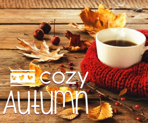 autumn, beautiful, and chocolate image