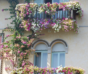 flowers, house, and balcony image