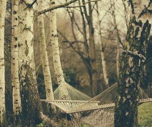 tree, nature, and hammock image