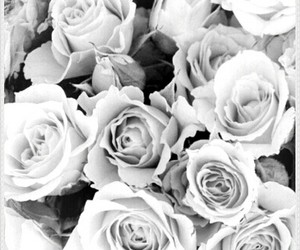 flores, ♡, and perfectas image