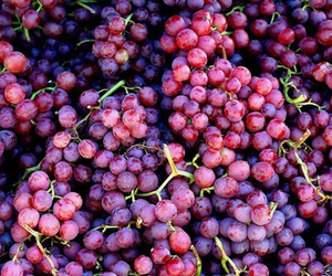 fruit, grapes, and food image