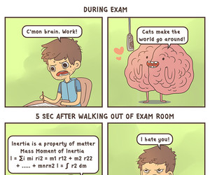 funny, exam, and brain image