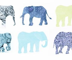 elephant, blue, and animal image