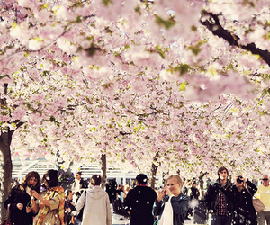 flowers, people, and tree image