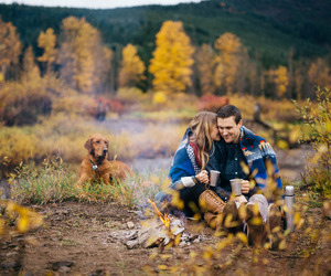 love, autumn, and dog image