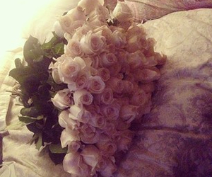 flowers, roses, and love image