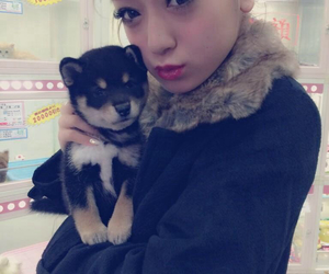 cutie, popteen, and puppy image