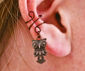 owl, copper, and earring image