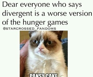 divergent and pansycake image
