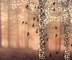bird, tree, and photography image
