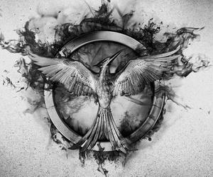 *-*, katniss, and mockingjay image
