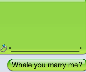 iphone, whale, and marriage image