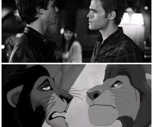 the lion king, stefan salvatore, and damon salvatore image