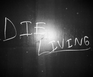 black and white, die, and living image